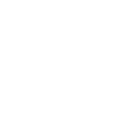 Simourg logo